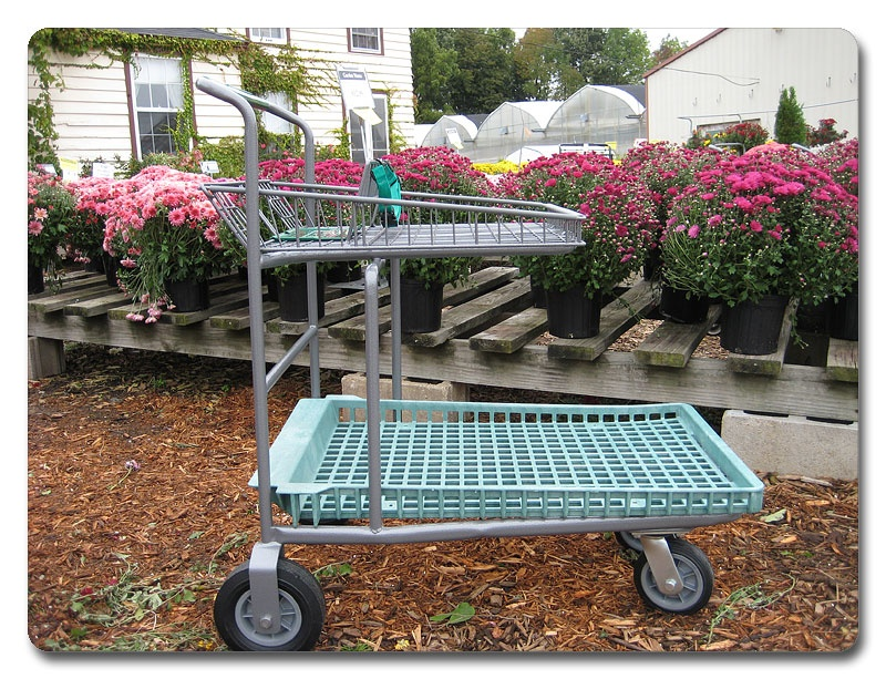 Garden Center Carts In Store Application Rw Rogers