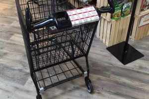 Rental Shopping Carts