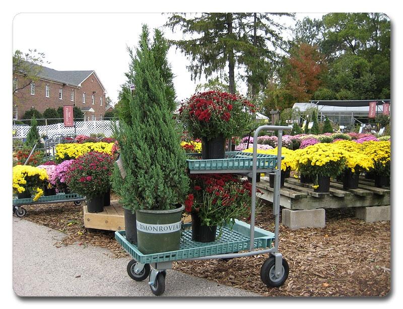 garden-center-carts-04