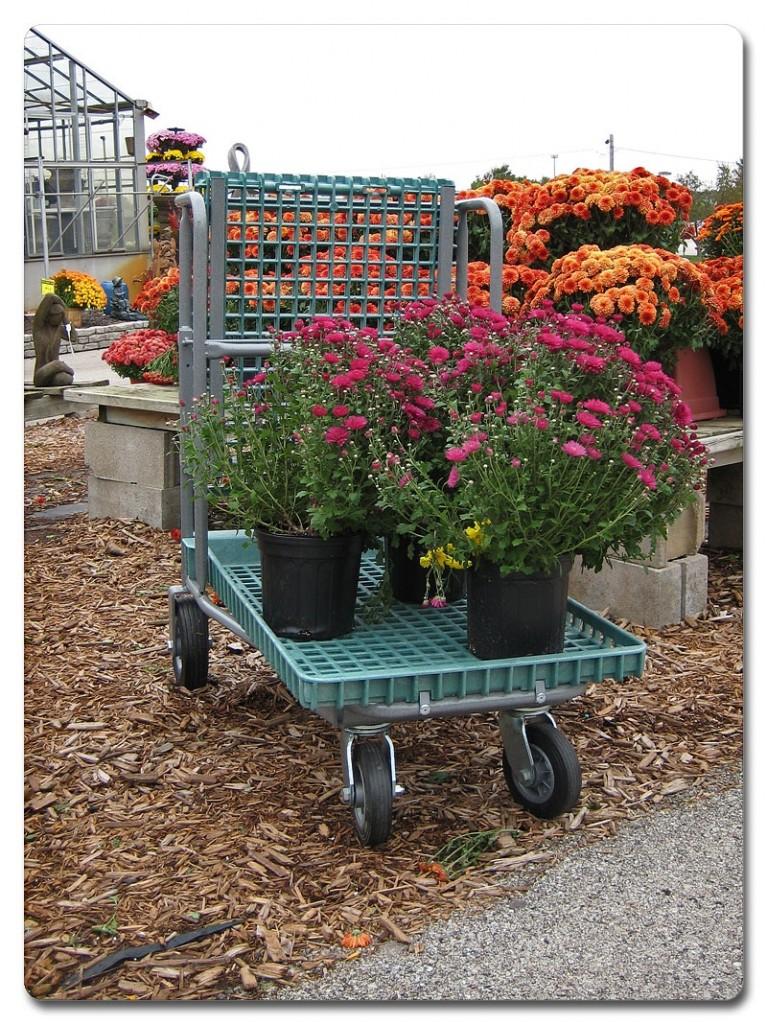 garden-center-carts-07