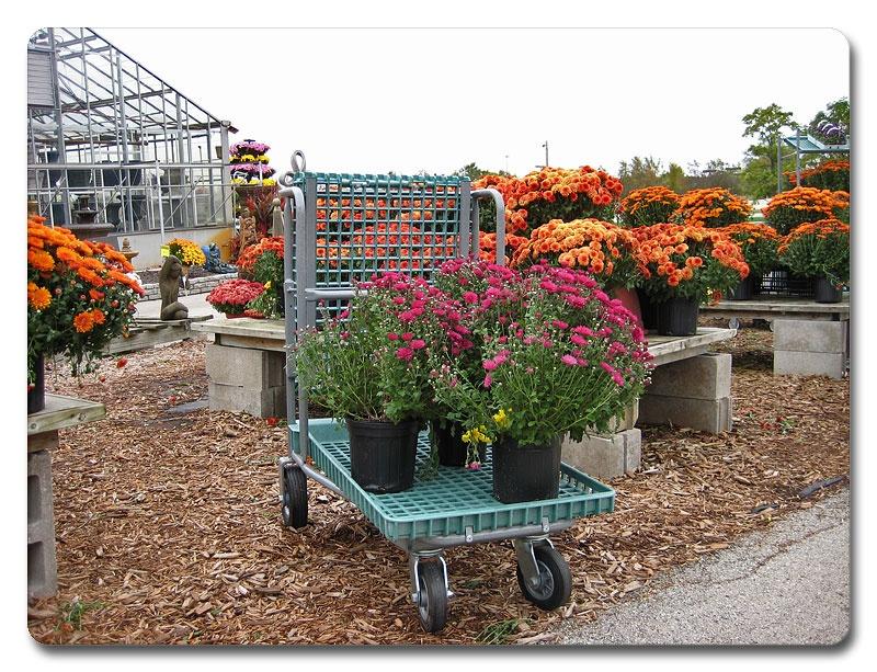 garden-center-carts-08
