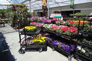 Gentil Garden Center Products