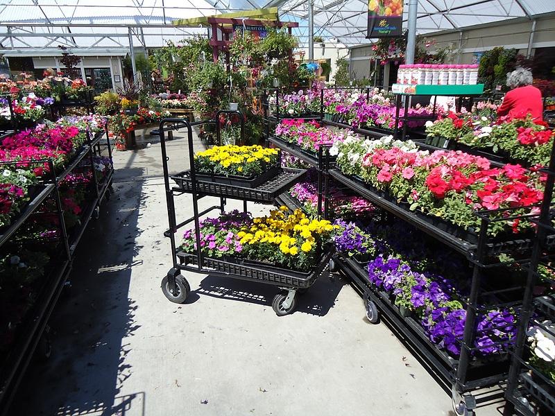 gardencenter-2012-01
